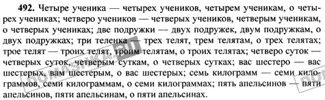 Как сделать русский язык за 6 класс  313