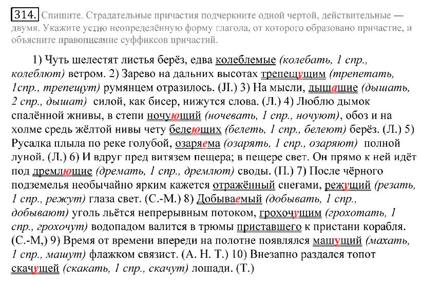 гдз по русскому языку 10-11 класс чешков
